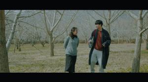 Film Adventure (5)